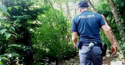 """Migranti: """"Ora fuggono nei boschi dove non possiamo raggiungerli"""""""